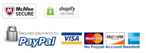 secured-payments-by-paypal